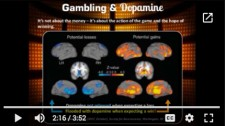 Gambling continuing education units donald codey casino